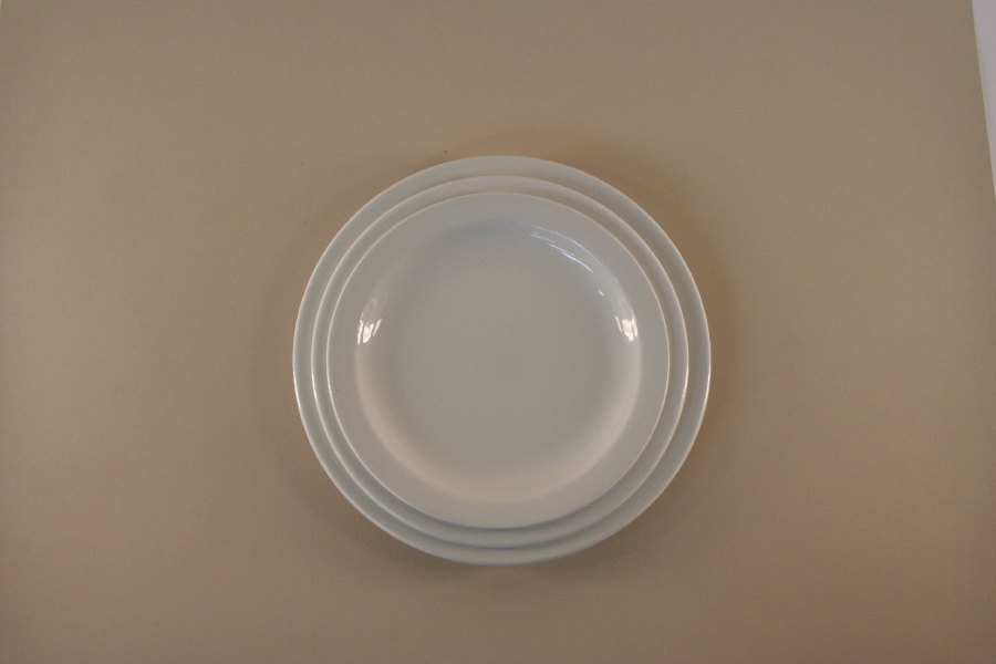 main-plate-continental